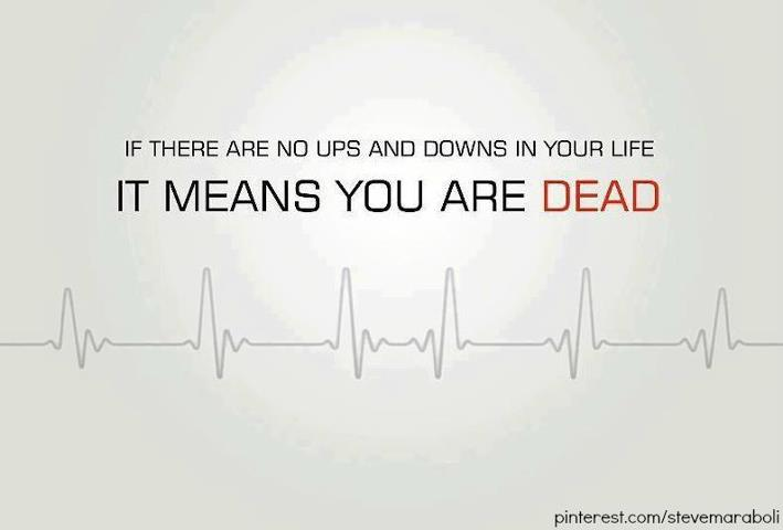 If there is no ups and downs in life