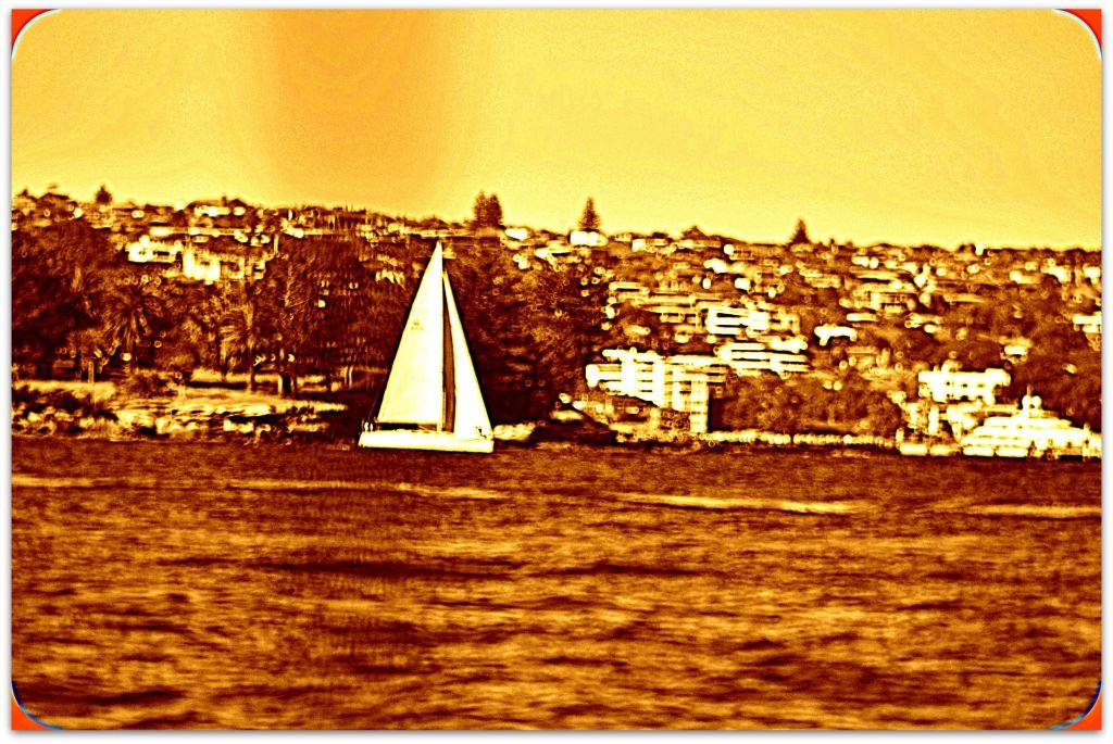 Sailing Sydney_102