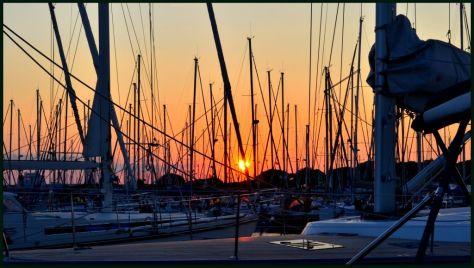 Port Camargue_267
