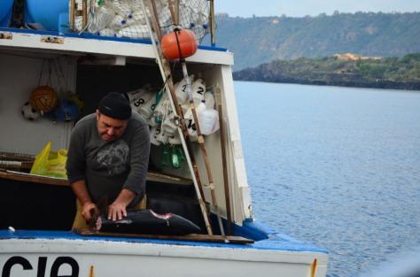 Stazzo Fishermen_107