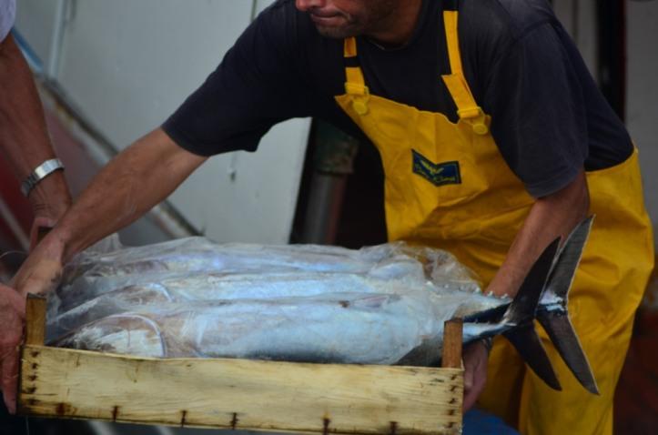 Stazzo Fishermen_113