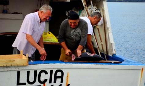 Stazzo Fishermen_97