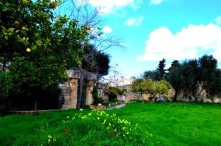 Tarxien Temples_463