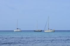 BeachBBQ w Maya_703