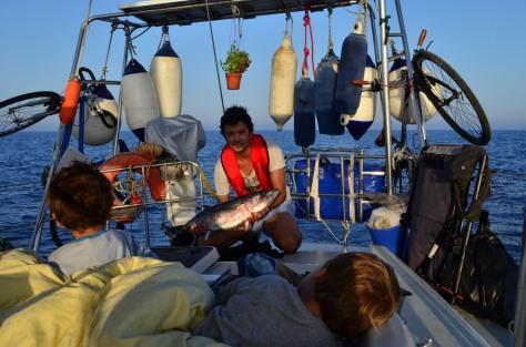 Big Tuna_795