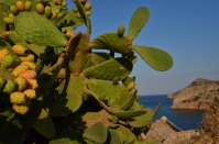 Spinalonga_440