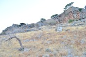 Spinalonga_455