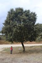Sierra d Nieves_538
