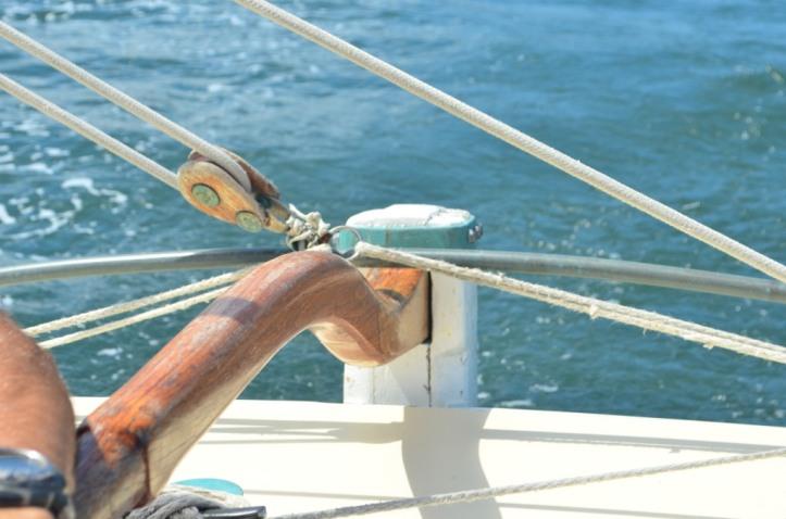 HarbourSailing_49