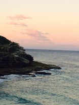 Bondi Cliff Sunset