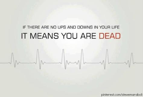 if-there-is-no-ups-and-downs-in-life