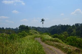 Campuan Ridge