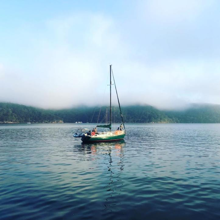 Rigy welcome to Pittwater